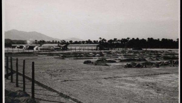 Albatera, el campo de concentración más importante del franquismo